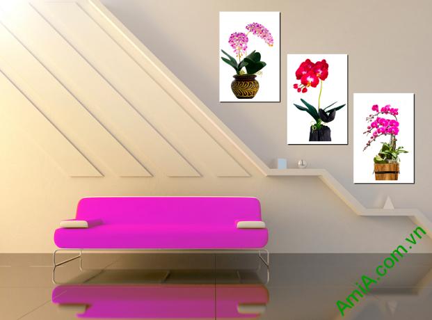 Tranh treo cầu thang đẹp với mẫu tranh hoa phong lan