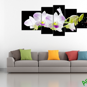 Tranh hoa phong lan trắng nền đen