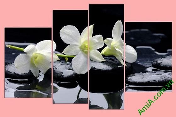 Tranh treo tường hoa lan trên nền đá