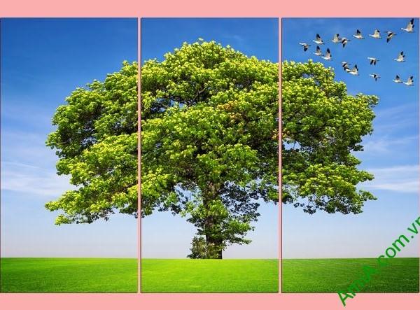 Tranh treo tường đẹp cây cổ thụ xanh mát