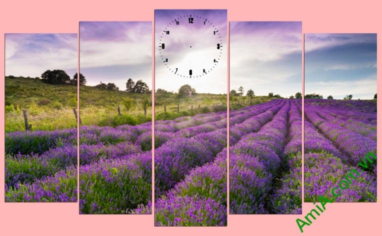tranh phong canh canh dong hoa lavender dep