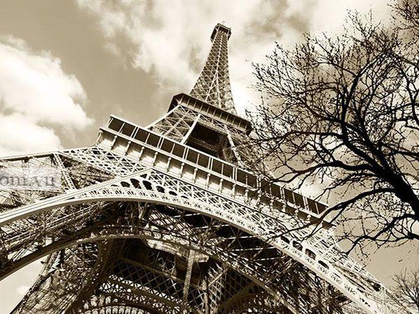 teesTranh tháp Eiffel đơn sắc