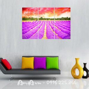 tranh dep canh dong hoa oai huong
