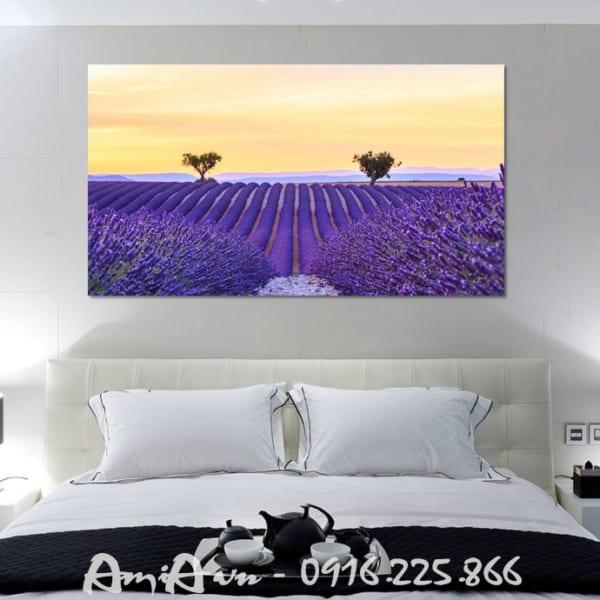 tranh canh dong hoa lavender dep