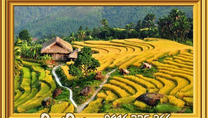 tranh canh dep lang que Viet Nam