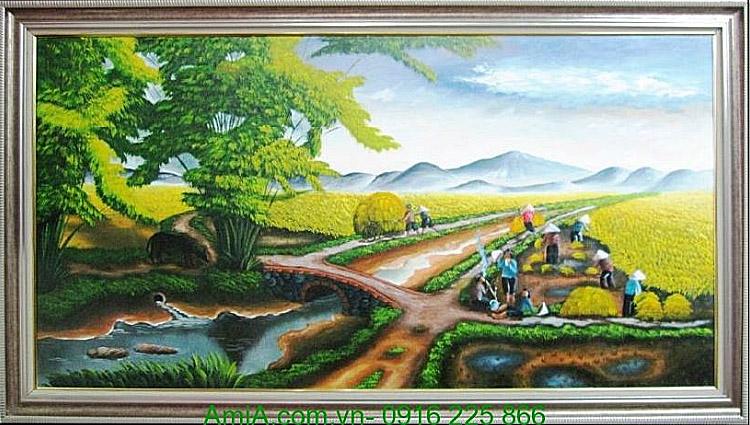 tranh phong canh dep ruong lua chin dang mua thu hoach