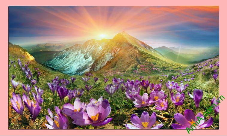 tranh treo tuong phong khach doi hoa nang