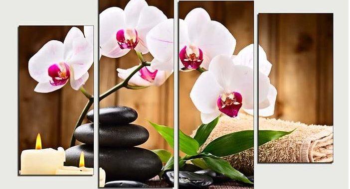 tranh spa hoa lan trang tinh khiet
