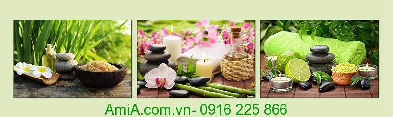 tranh spa chat luong cao hinh anh hoa nghe thuat