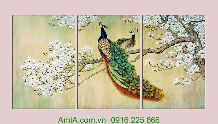 tranh dep doi chim cong