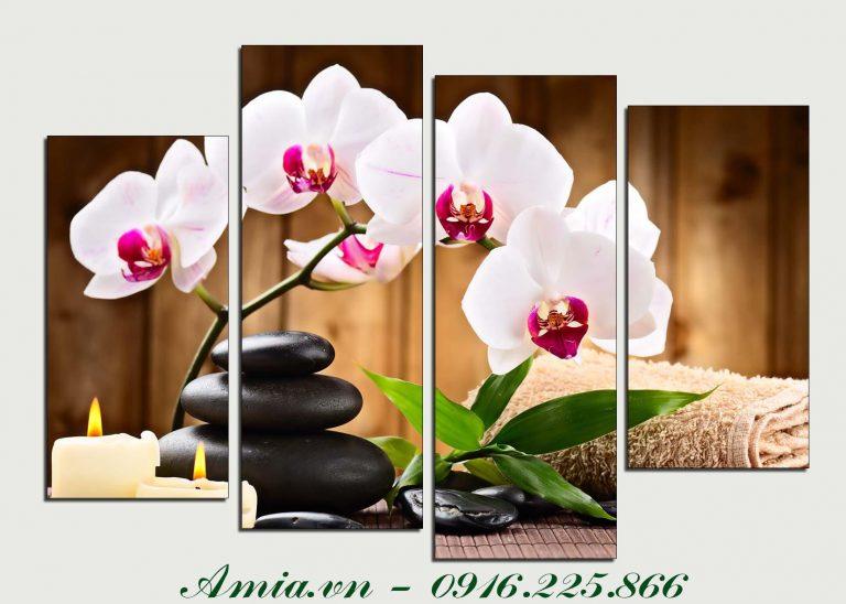 tranh treo phong spa nhanh hoa lan trang va nen