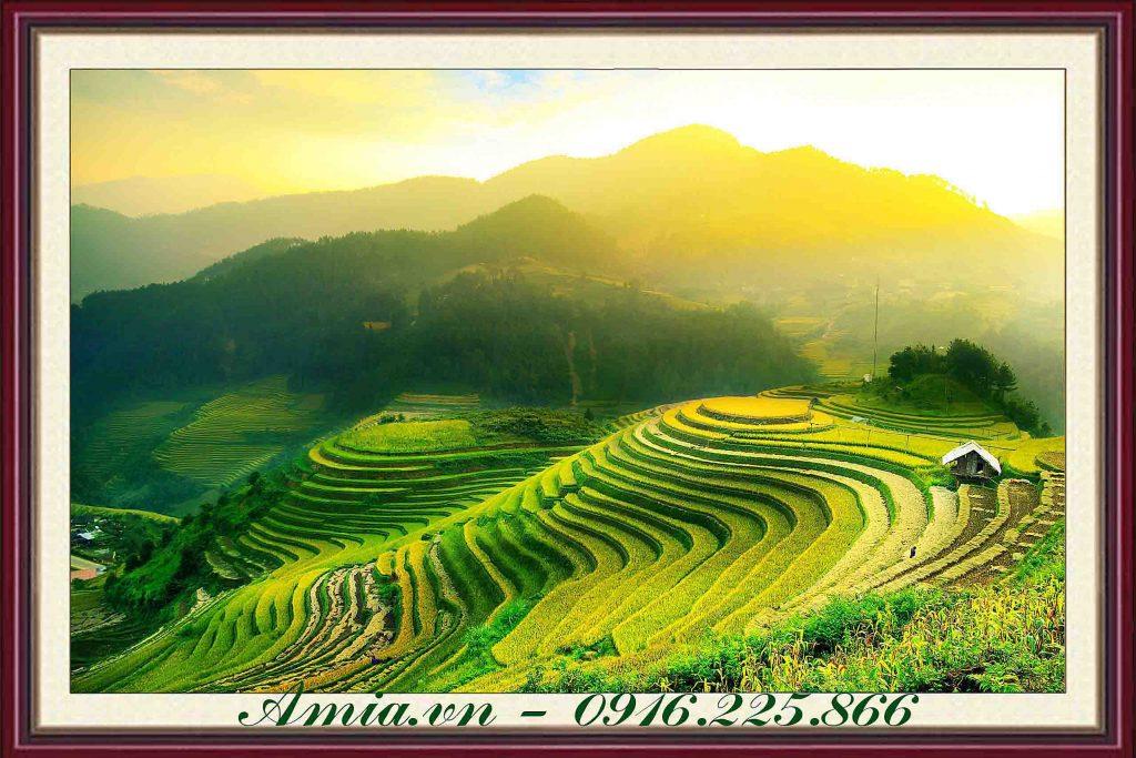 tranh treo phong khach cho nguoi menh kim ruong lua bac thang