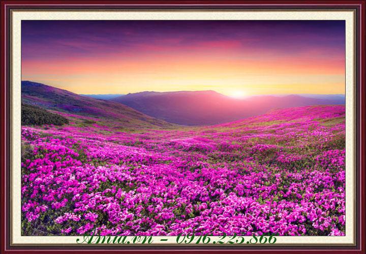 tranh phong canh doi hoa tim luc binh minh