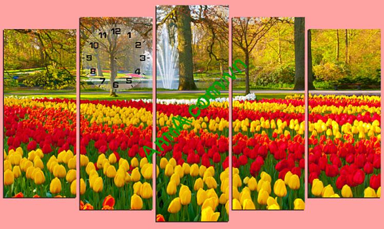 tranh phong canh mua he o vuon hoa tulip