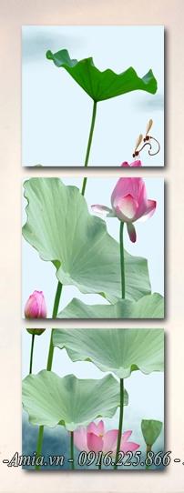 tranh phong canh hoa sen kho doc dep
