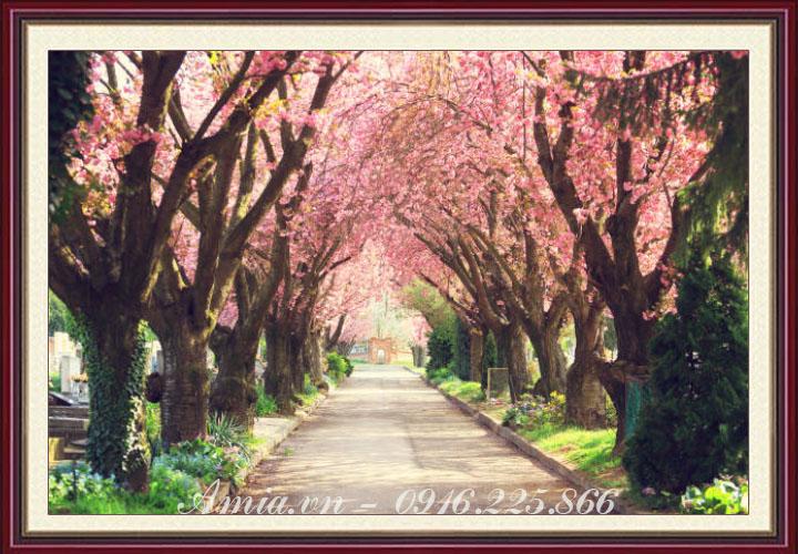 tranh phong canh con duong hoa han quoc
