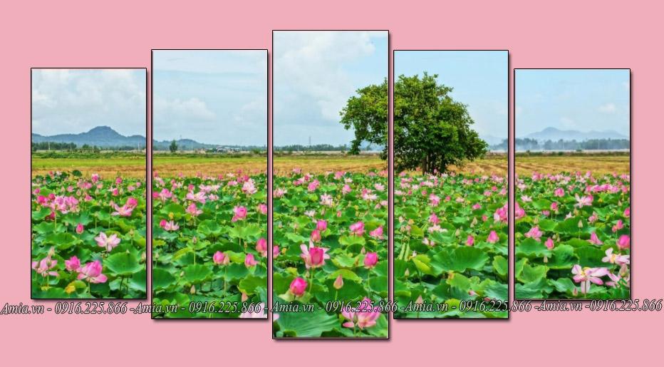 tranh phong canh dam hoa sen ghep bo