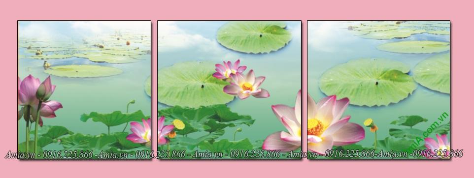 tranh dep hoa sen trong ho ghep bo 3 tam