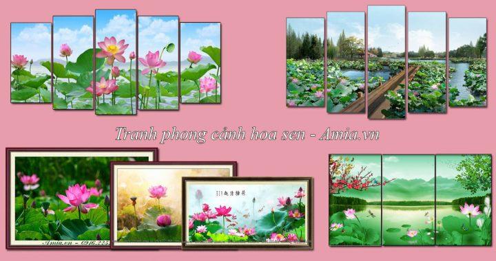 tranh phong canh hoa sen