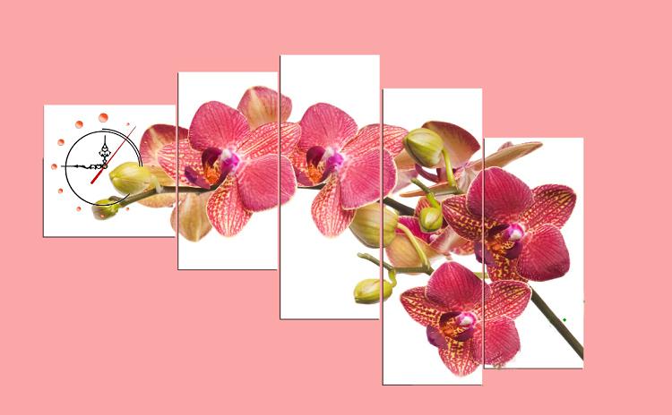 tranh treo phong ngu hoa lan do co dong ho