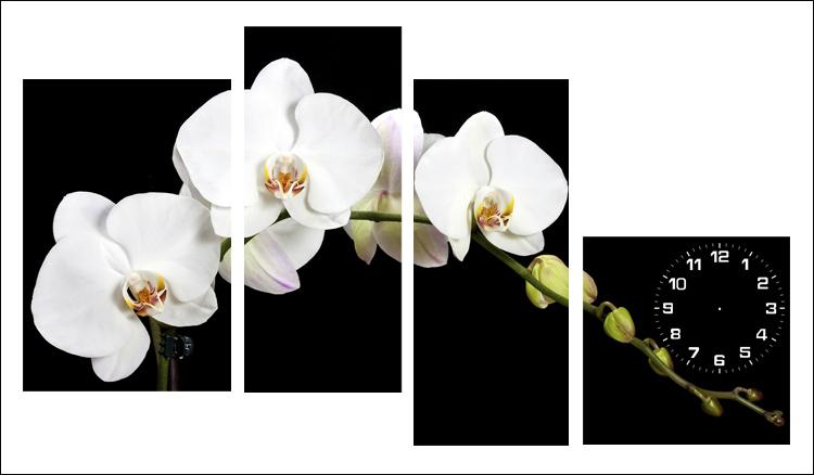 tranh treo phong ngu hoa lan trang