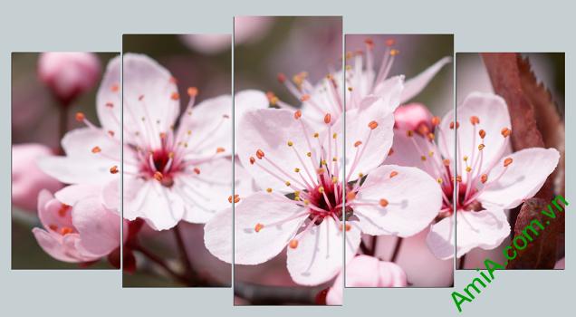 Tranh hoa đào đẹp chơi tết