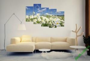 Hình ảnh mẫu tranh hoa cúc họa mi