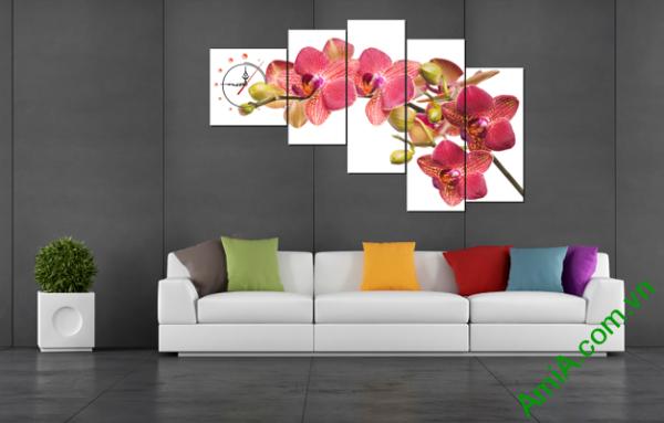 Hình ảnh mẫu tranh hoa lan ghép bộ