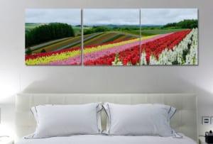 tranh đẹp ve canh dong hoa