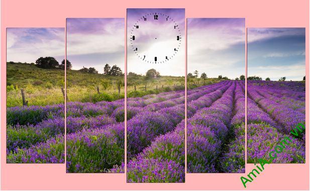 tranh phong canh canh dong hoa oai huong