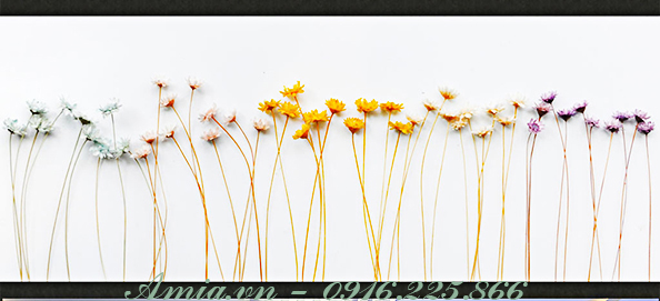 tranh treo tuong hoa dai nghe thuat in 3d