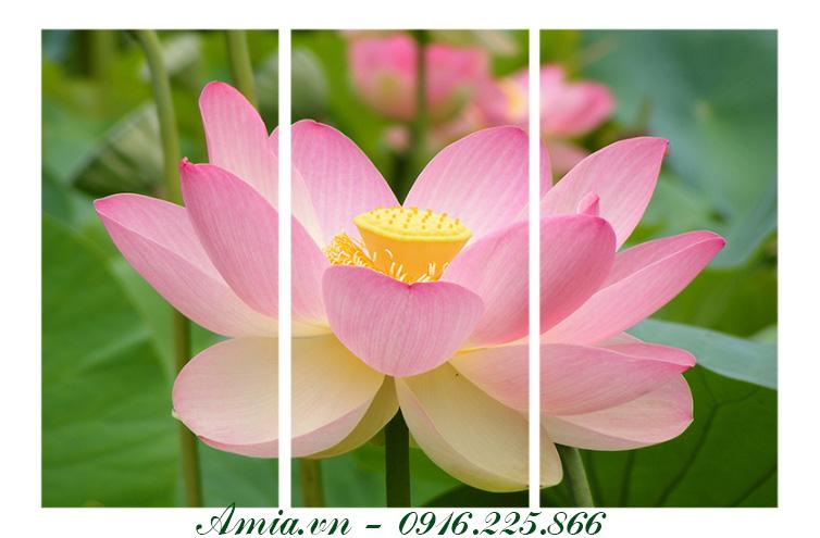 tranh hoa sen phong thuy dem den khong gian an tuong