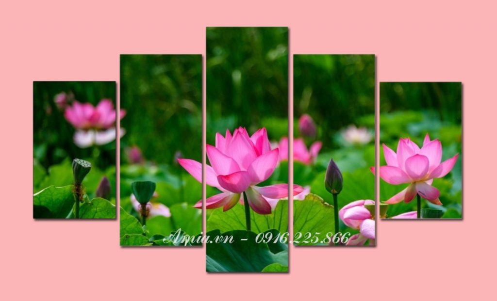 tranh hoa sen phong thuy trong dam