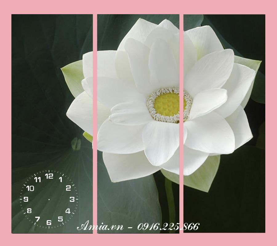 tranh hoa sen trang phong thuy mang ve dep mong manh