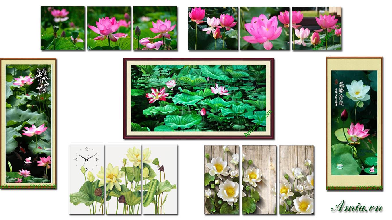 tranh tet hoa sen trang tri phong