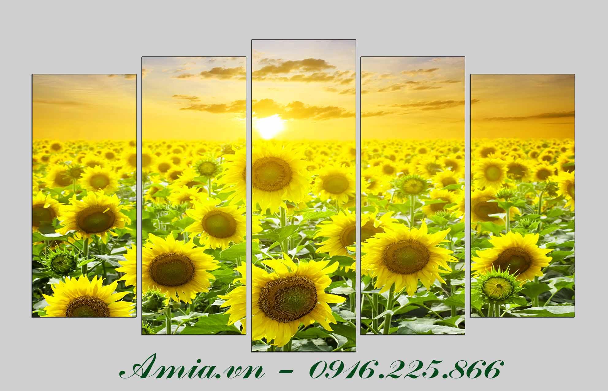 Tranh cánh đồng hoa hướng dương rực rỡ Amia 1409