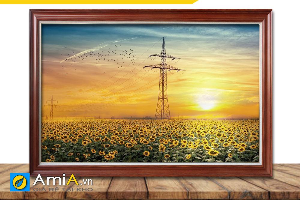 tranh 1 tấm hình ảnh cánh đồng hoa