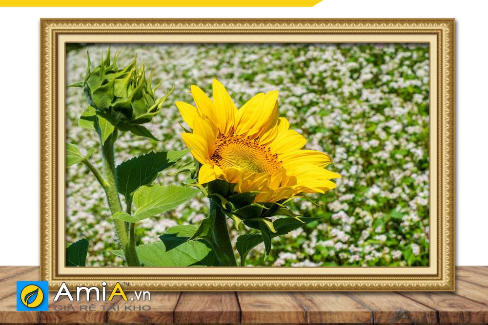 ý nghĩa bức tranh hoa hướng dương