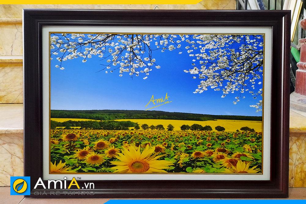 Hình ảnh Tranh phong cảnh cánh đồng hoa hướng dương trang trí phòng ăn AmiA 1902